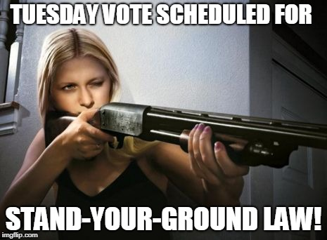 YUGE Pro-Gun Bill Opportunity – Take ACTION!