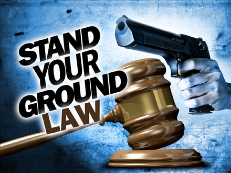 House Leadership Advances Gun-Control Bill, Kills Vitale's Stand-Your-Ground Amendment to HB228!